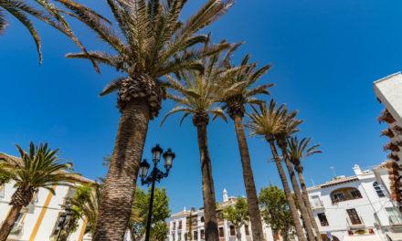 Andalousie #3 : Plage et farniente à Malaga