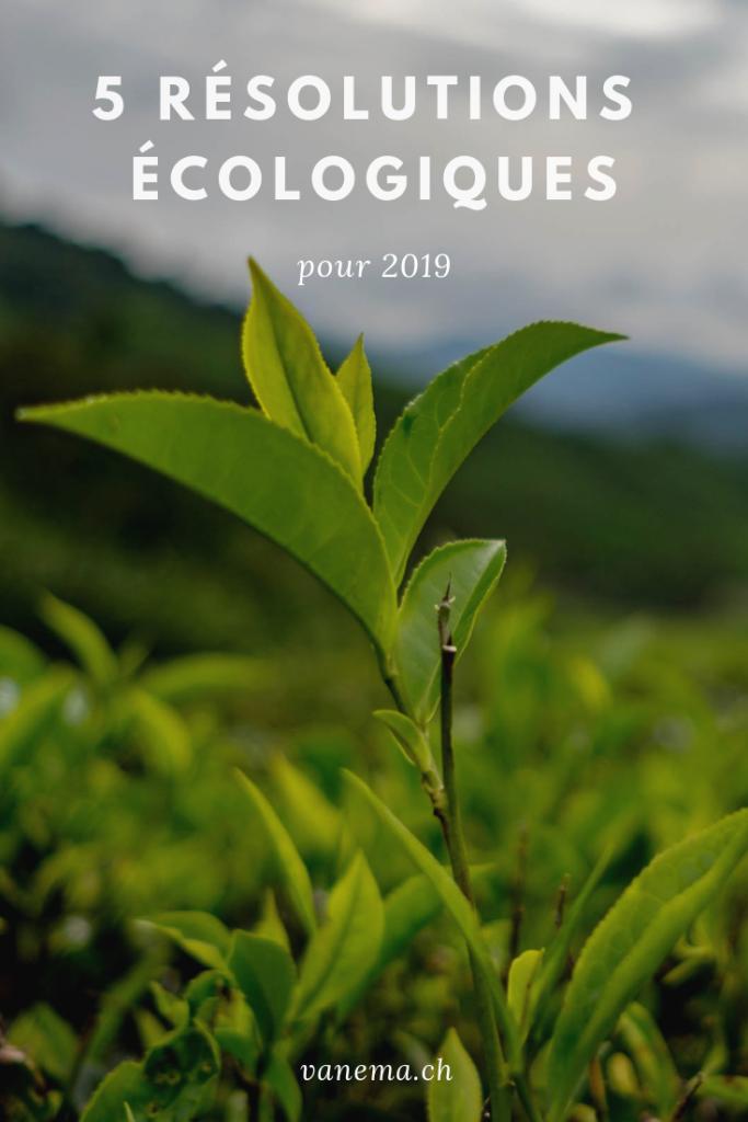 image pinterest sur 5 résolutions écologiques pour 2019