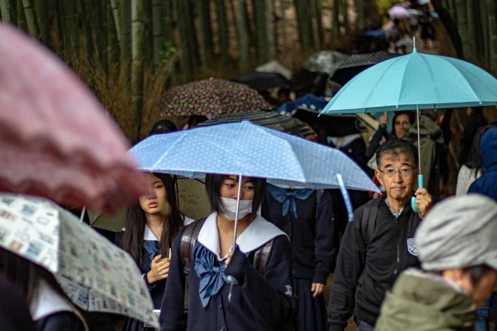 Visiteurs des Bambou d'Arashiyama