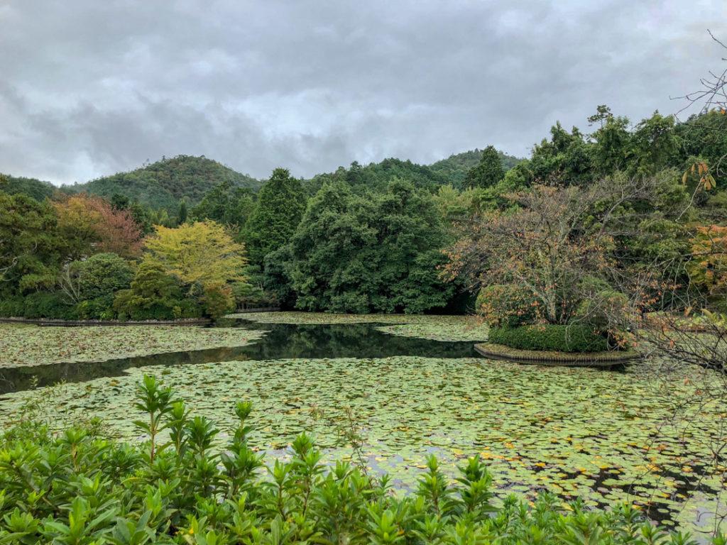 La visite du Kinkaku-ji et ses jardins en automne