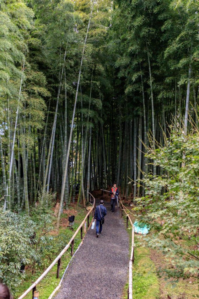 le temple de Kodai-ji et sa bambouseraie