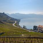 Suisse : Randonnée dans les vignobles de Lavaux