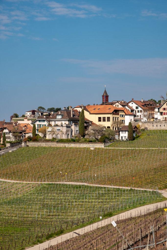 Vue d'un village dans la région de Lavaux