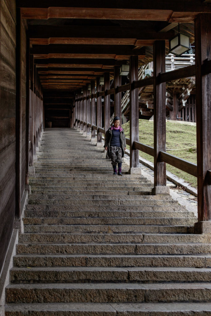 escaliers d'un temple à Nara