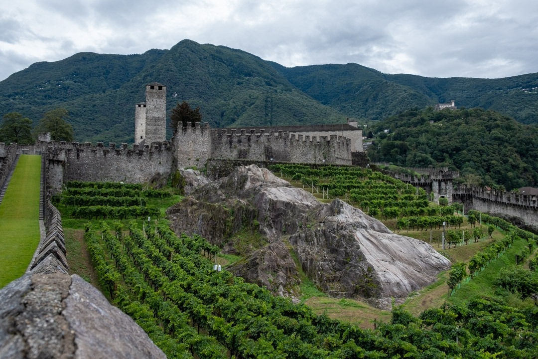 Le château de Castelgrande se situe sur une colline entouré de vignes.