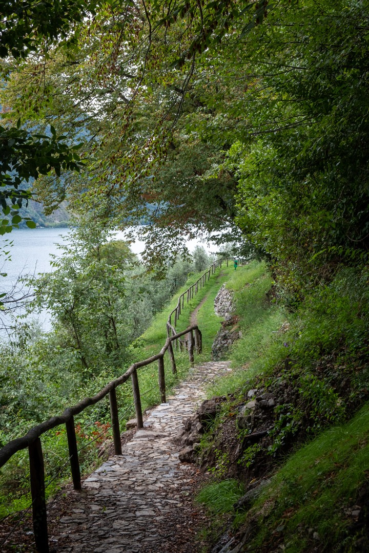 Le sentier des oliviers qui mène au village de Gandria