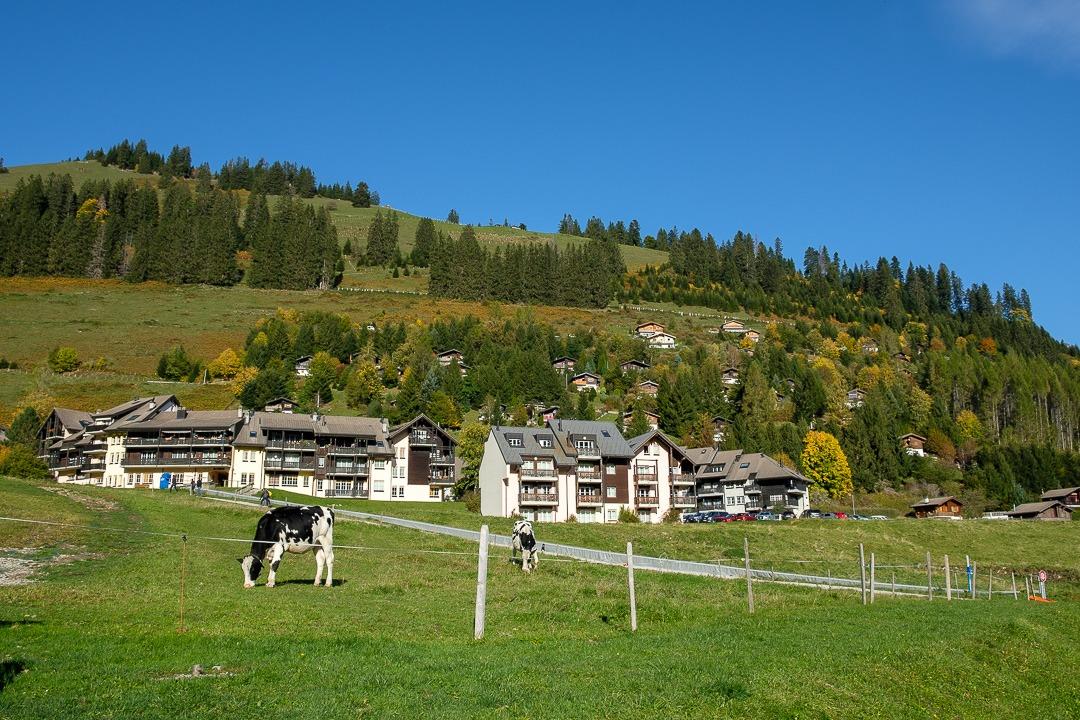 Le village de Moléson-sur-Gruyère dans le canton de Fribourg.