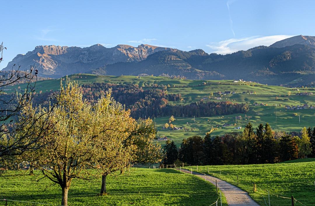 Road trip de 5 jours en Suisse centrale